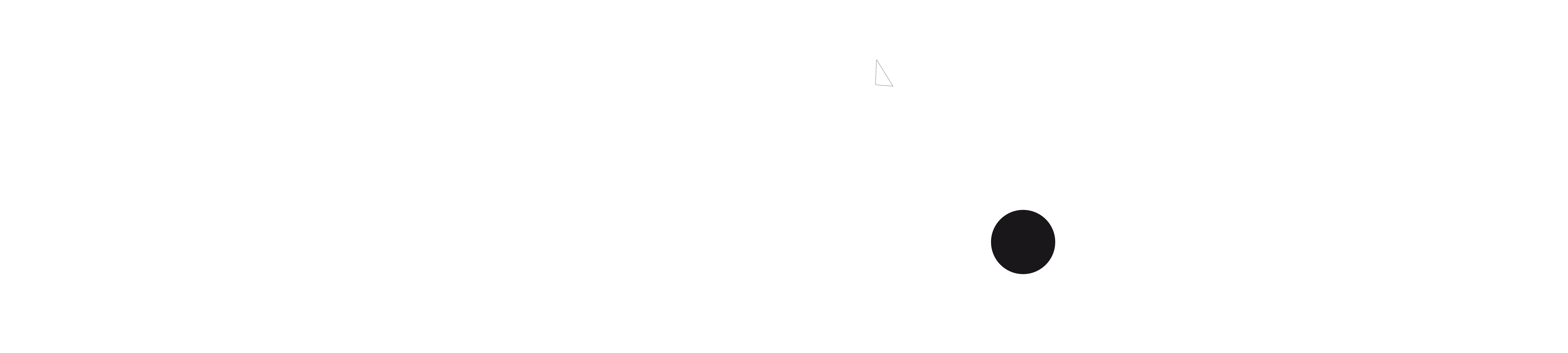 NAUTIC SPORTS Logo